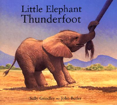 Little Elephant Thunderfoot By Grindley, Sally/ Butler, John (ILT)